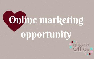 Vakantie?! Jouw online marketing opportunity.